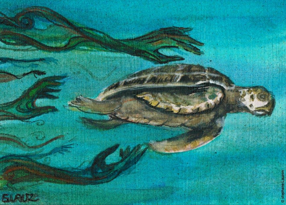 The rig - la tortue